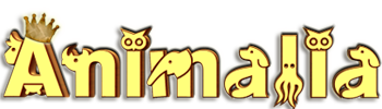 logo-animalia-dog-sitter-ser-bitcoin